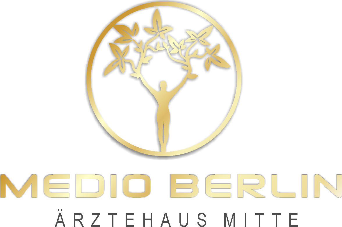 Medio-berlin-logo